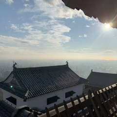 kawashima_photo04