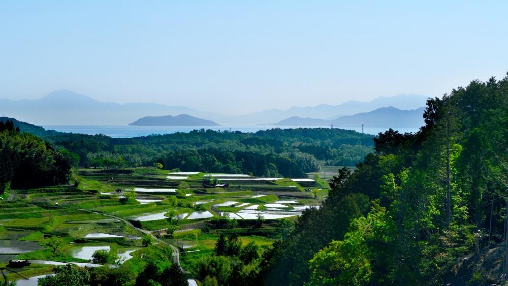 1棚田&琵琶湖
